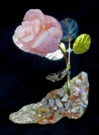 rq - pk m with pk opal b