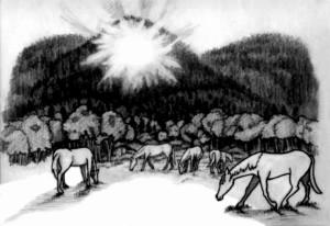 1, eastfork horses 1
